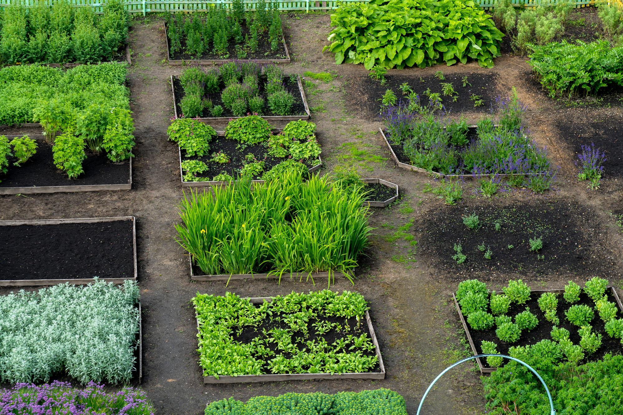ГарденБокс - спец. тара для садоводства